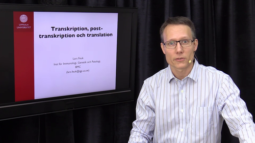 Transkription, post-transkription och translation